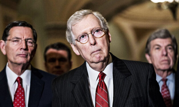 When Stupid is Compounded by Stupid: Twitter and Mitch McConnell