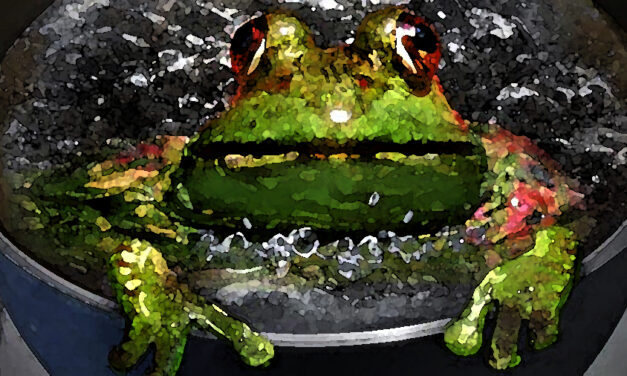 Boiling a Frog: The Death of Democracy by Degrees